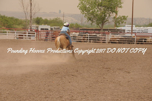 Sierra County 6-22-13 Jr Ribbon Roping