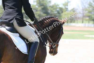 2009 Spring Bay  Horse Trials