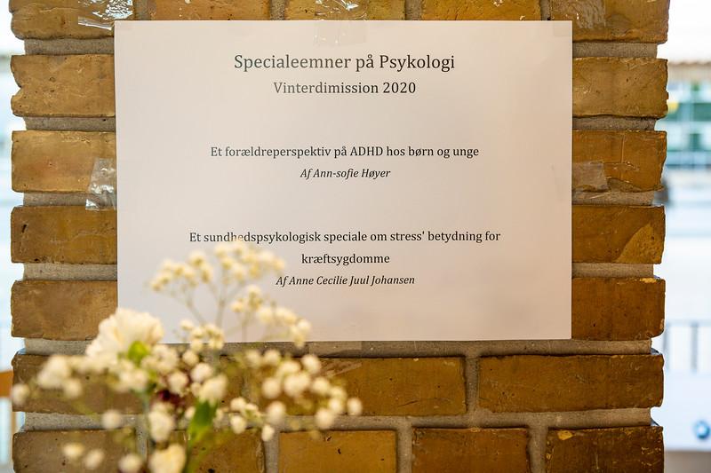 Dimission, psykologi, vinter 2020