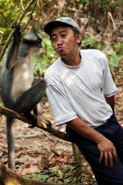 The monkeys were pretty used to people. And the guides were pretty used to monkeys.