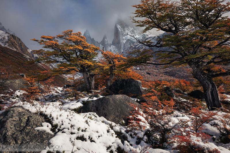 Patagonia - Snow 6.jpg