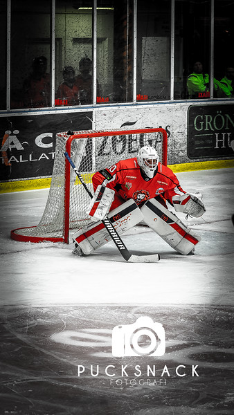 Hockeyettan Södra: Hanhals Kings vs Tyringe SoSS 2020-11-04