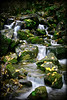 Autumn view of beautiful hidden waterfall with mossy rocks.