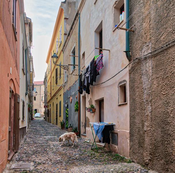 Alghero Alley
