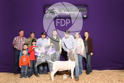 Southeast Regional Livestock Show