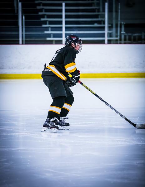Bruins2-9.jpg