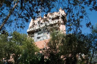 Disney 11/2008