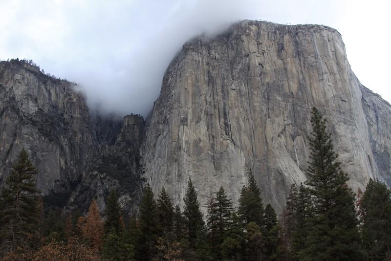 Yosemite, 11/21/16