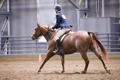 English Horsemanship