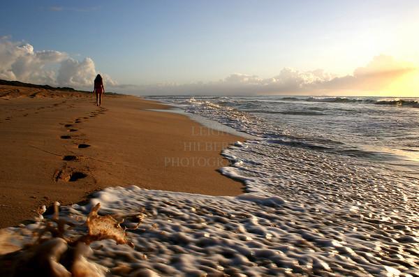 Hawaii Beach &  Shore Scenes