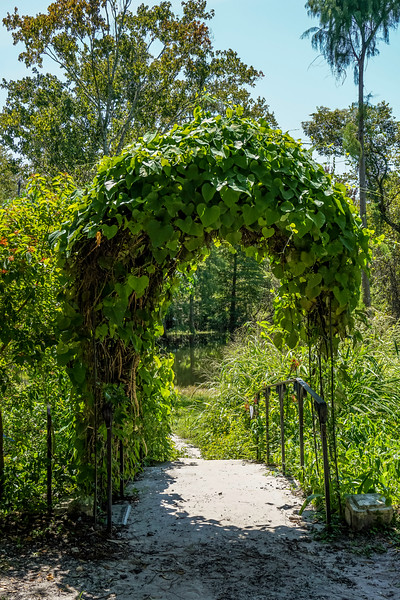 Mead-Gardens-27.jpg