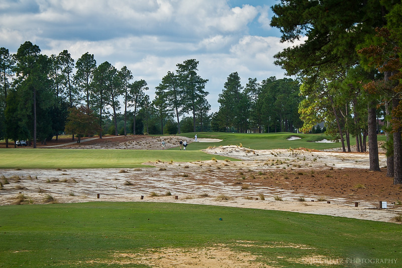 PINEHURST #2. Example of major renovation. The bermuda rough has been removed, and replaced with sandy waste areas - more like the original Donald Ross design.