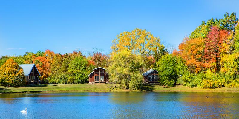 Fall 2020 at Serenity Springs