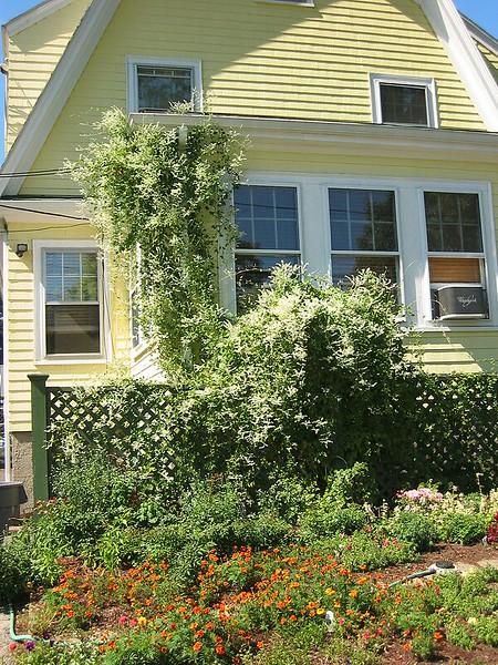 garden-2005-09-0402_std.jpg