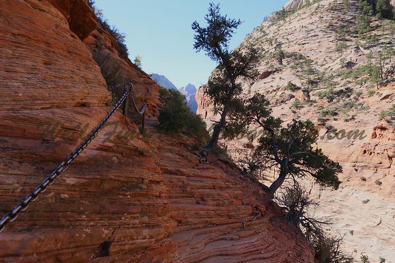 Chain trail 5.jpg