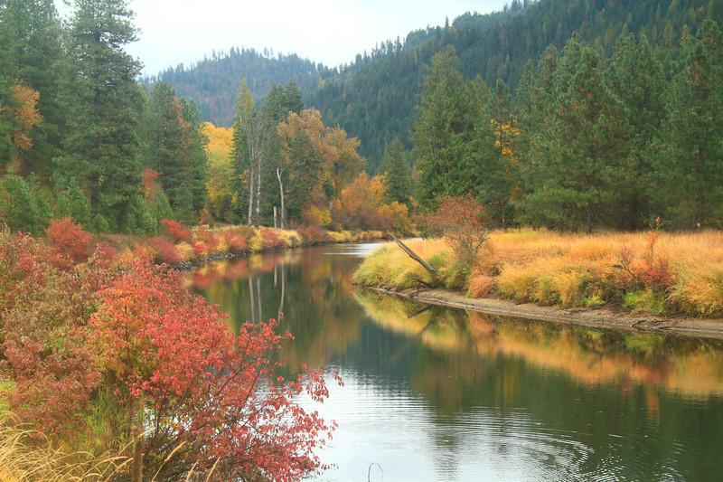 fall 2019 st maries river-1647.jpg