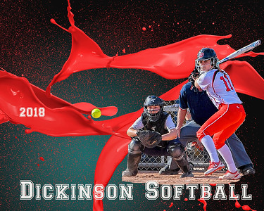 Dickinson Softball 2018