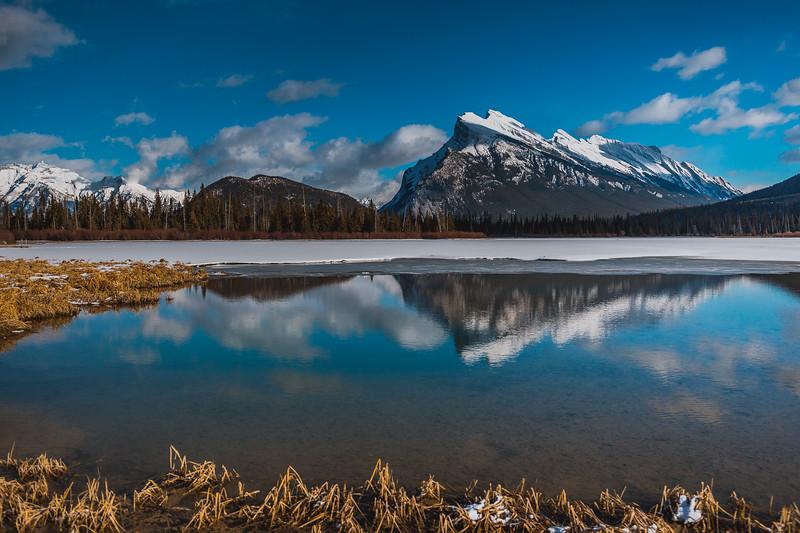 Banff - Feb 2015-8189.jpg