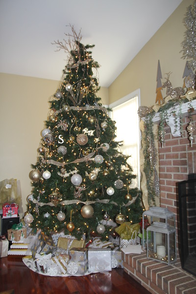 Edward & Sonya's Christmas Tree 2016