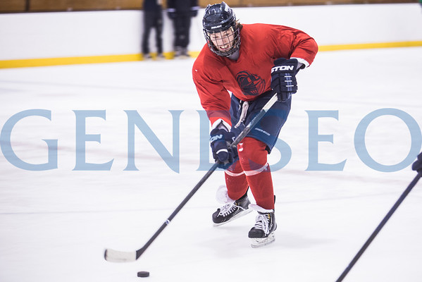Ice Hockey NCAA Championship - Lewiston, Maine