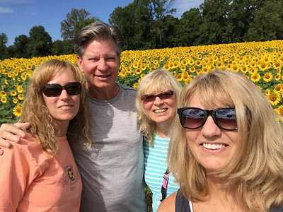 2017 Clear Meadow Sunflower Farm