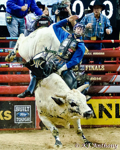 2014 PBR Still More to Experience