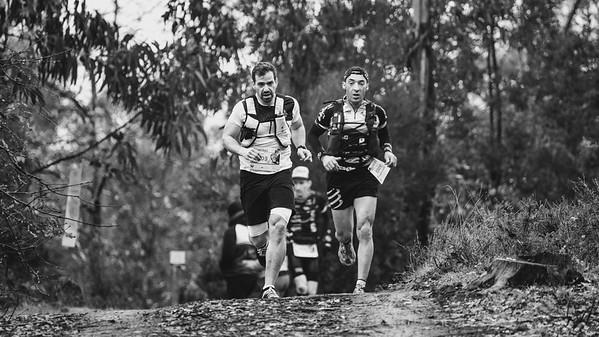 sport trail running 2019