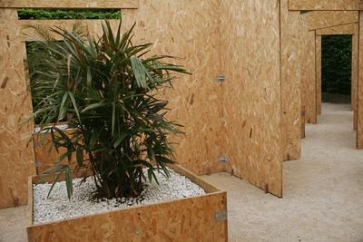 15 - Cabinets de Curiosités végétales