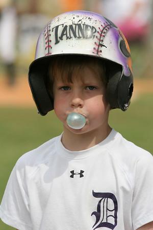 Tanner Tigers Baseball 2006