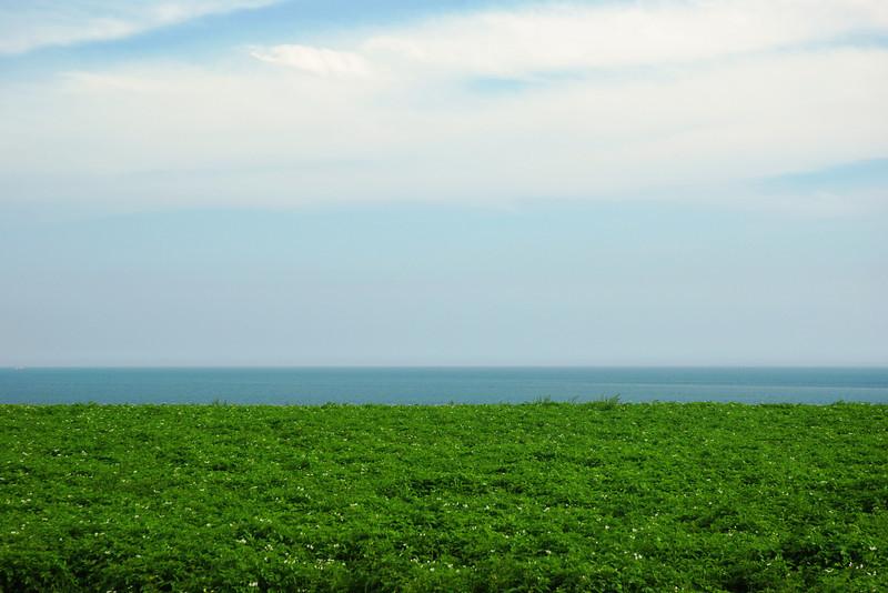 Pomme de terre, mer et ciel - Île-du-Prince-Édouard en une image