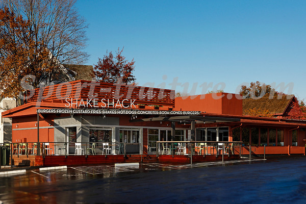 Shake Shack, Westport, CT