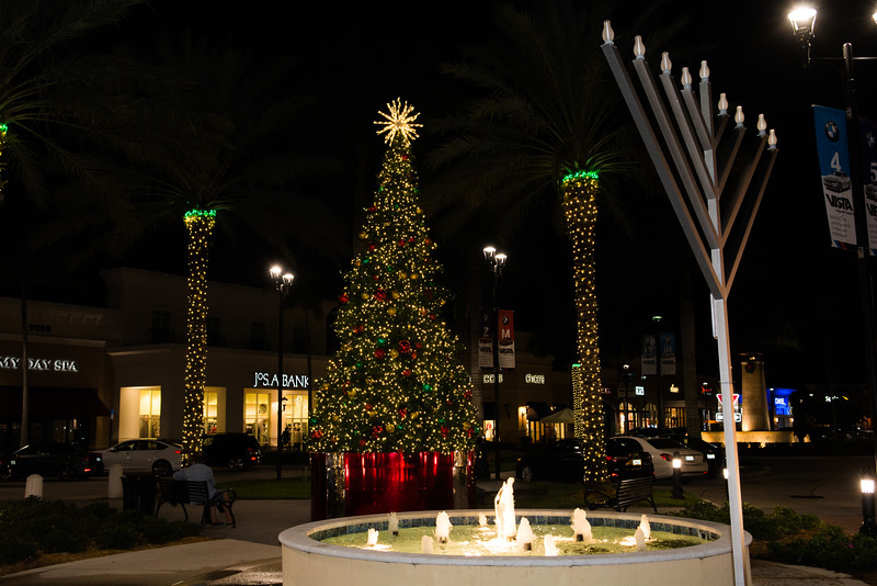 Delray Marketplace Holiday Event - December 10, 2016