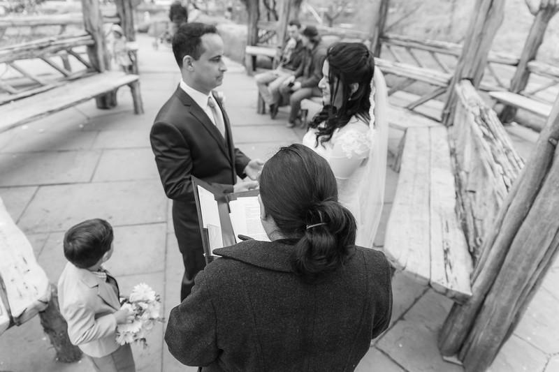 Central Park Wedding - Diana & Allen (106).jpg