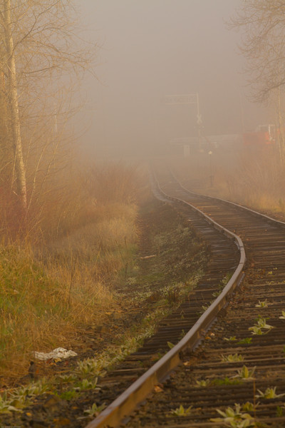 fog-0050.jpg
