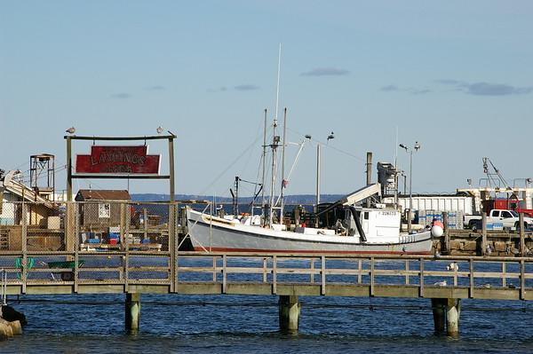 Maine and Acadia