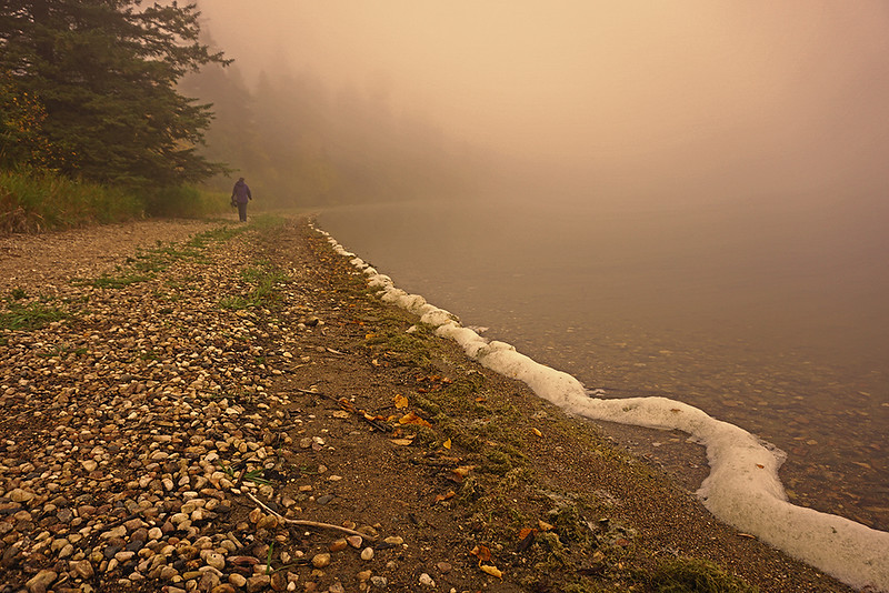 S15-Colour-wayne adams-walk in the fog.jpg