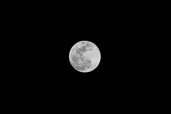 2009 Moon