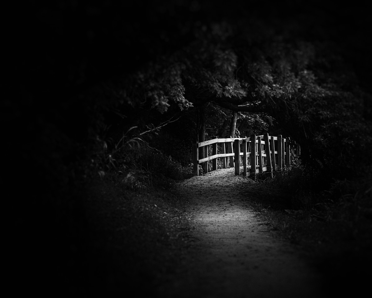 Dark Footbridge
