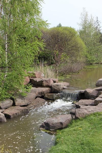 Webster Arboretum
