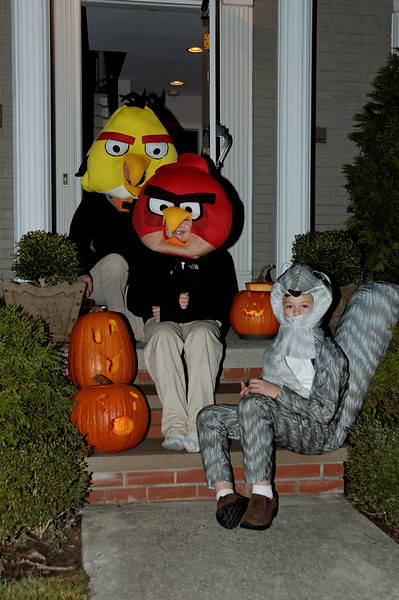 Jack & Andrew as Angry Birds & Will as Squirrel.jpg