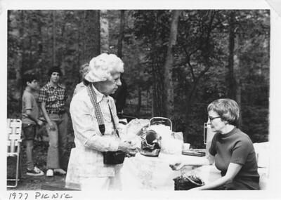 1977 Picnic