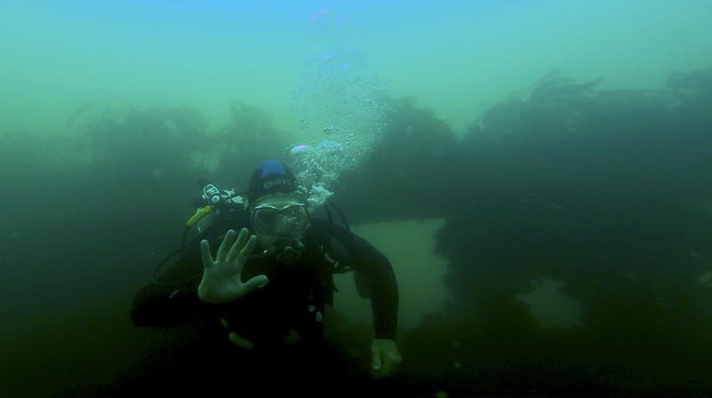 Devon-Underwater-13.jpg