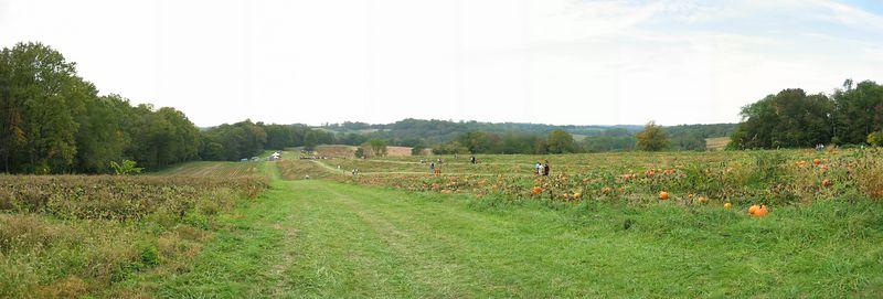 Ramsey's Farm