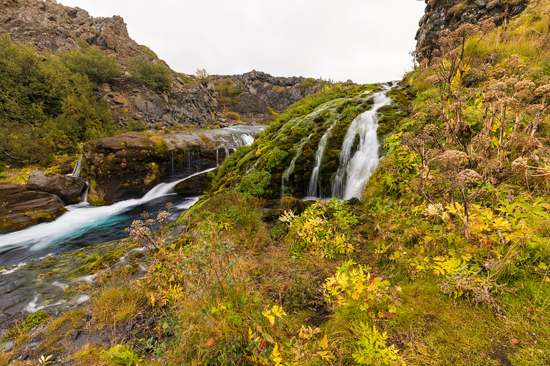 Iceland19_-1595.jpg