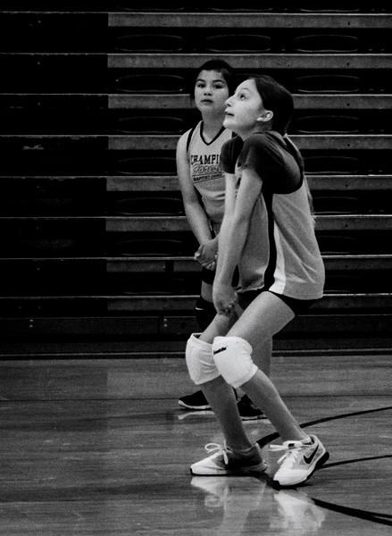Volleyball--4.jpg