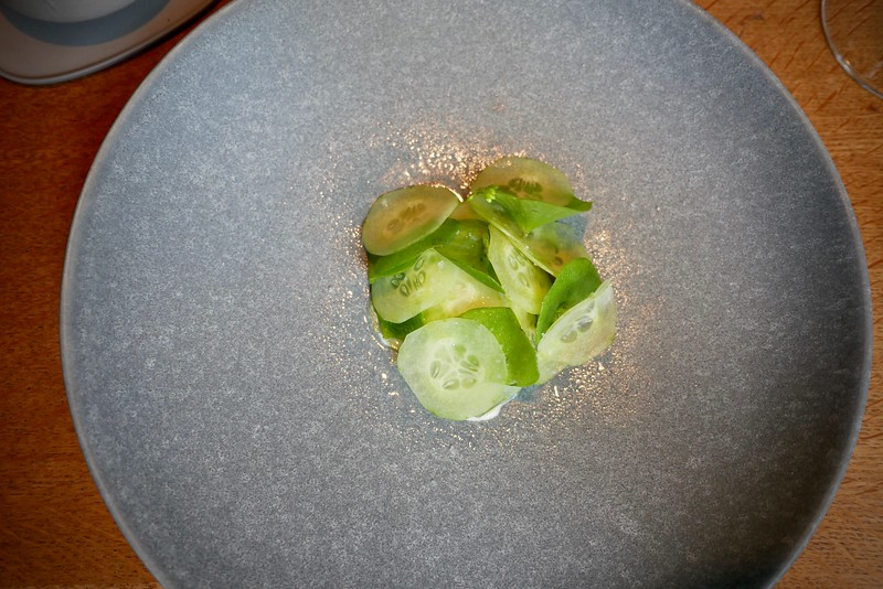 Relæ: oysters from North Jutland with cucumbers and purslane