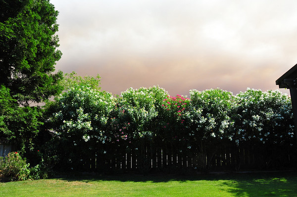 The Humboldt Fire - Jun 12, 2008