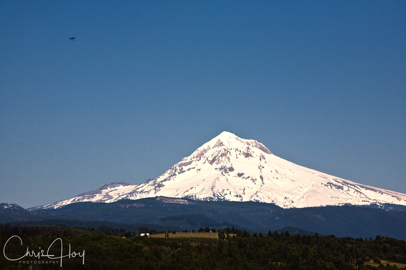 Mt. Hood, Oregon, as seen from Jonsrud Viewpoint