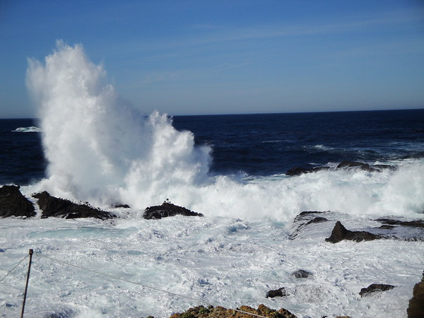 Point Lobos Nov 2010