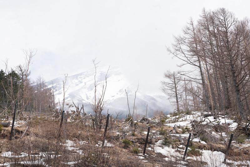 20190411-JapanTour-5297.jpg
